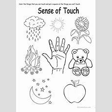 Five Sense Worksheet New 482 Five Senses Touch Worksheet