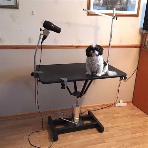 grooming table for sale dog grooming table hydraulic lift type for small to