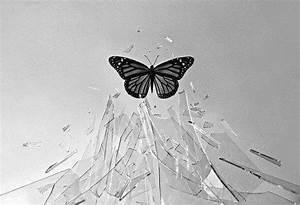 Breaking through the glass ceiling | Black & White | Pinterest