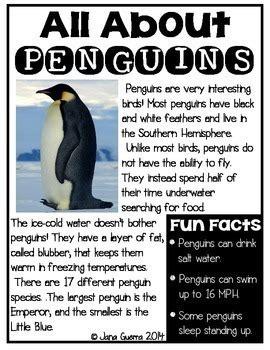 All About Penguins: A Non-Fiction Unit by Jana Guerra - We ...