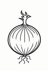 Onion Coloring Para Colorear Ui Cebolla Dibujo Coloriage Zwiebel Malvorlage Kleurplaat Målarbild Lök Imágenes Printable Dibujos Schoolplaten Schulbilder Grote Große sketch template