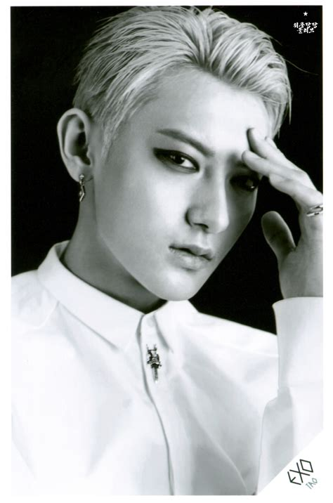 exo  picture  overdose sd card set  pop