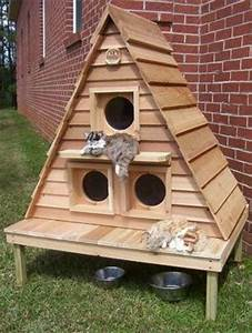 20, Modern, Pet, House, Design, Ideas, For, Cats, And, Dogs