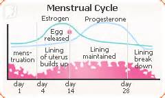 what are the causes of irregular periods 34 menopause symptoms