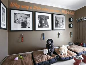Drool-Worthy Dream Spaces (For Dogs!) HGTV