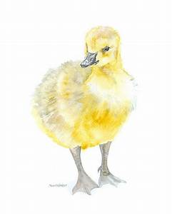 515 best Watercolor Birds images on Pinterest