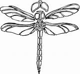 Dragonfly Coloring Pages Dragonflies Printable Adult Drawings Crafts Super Libelula Segments Outline Dibujo Animal Horse Getcoloringpages Para Colorear sketch template