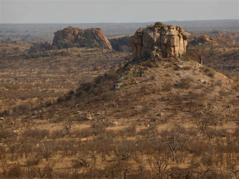 mapungubwe photography adventure   oct  wild card