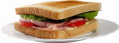Sandwich Burger Pngimg Transparent