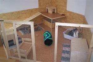Kaninchengehege Bauen Innen : haltungsformen l wenwidder hobbyzucht ~ Frokenaadalensverden.com Haus und Dekorationen
