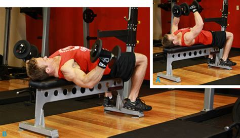 pec deck flyes with dumbbells chest workouts for beginners exercise your voice