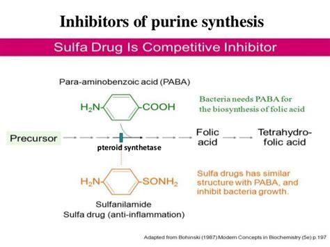 Nucleotide Chemistry & Metabolism