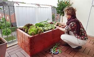 Hochbeet Für Garten : hochbeet f r den balkon hochbeet ~ Sanjose-hotels-ca.com Haus und Dekorationen