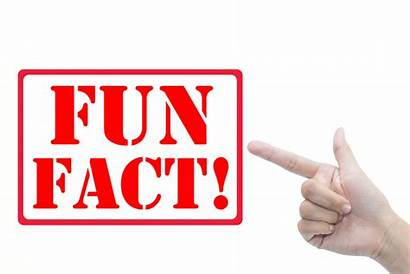 Fun Fact Facts Background Business Text Dental