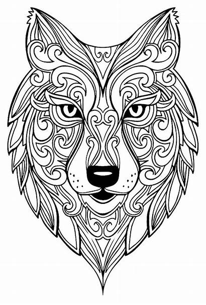 Coloring Pages Mandala Animal Decorating Complex Adults