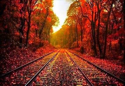 Wallpapers Fall Autumn Desktop Backgrounds