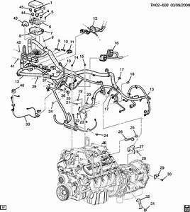 Caterpillar 3116 Engine Diagram