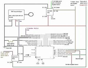 Valet Remote Car Starter Wiring Diagram