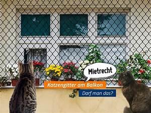 Gasgrill Auf überdachten Balkon Erlaubt : mietirrt mer katzengitter sind laut amtsgericht schorndorf auf dem balkon erlaubt wenn sie ~ Orissabook.com Haus und Dekorationen
