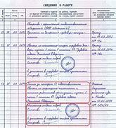 Как правильно заполнить счет-фактуру с НДС и без: порядок и правила