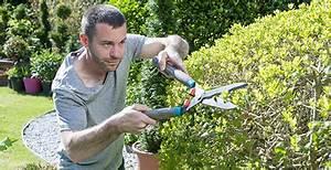 Prix Pour Tailler Une Haie : comment et quand tailler une haie jardinerie truffaut ~ Dailycaller-alerts.com Idées de Décoration