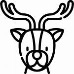Deer Icons Icon Lineal