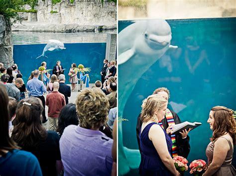 mystic aquarium wedding that 39 s hilarious 5 24 12 hilarious wedding ceremony photos by top new wedding