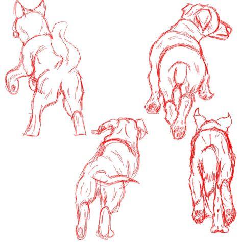 running  dog sketches  black tiger  evil  deviantart