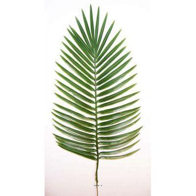 feuille de palmier deco feuille de palmier
