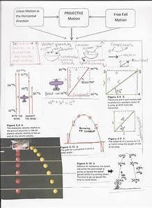 Conceptual Physics Worksheet