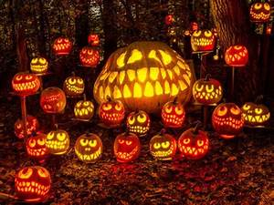 Halloween In Amerika : 1000 images about pumpkin decorating on pinterest pumpkins pink pumpkins and black pumpkin ~ Frokenaadalensverden.com Haus und Dekorationen