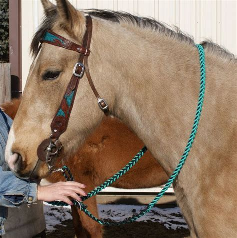 horse custom bridle colors horses tack buckskin vibrant etsy western barrel would