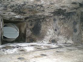 Image result for mold in ac ducts
