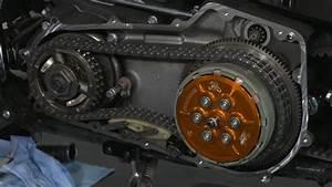 Scorpion Clutch Assembly