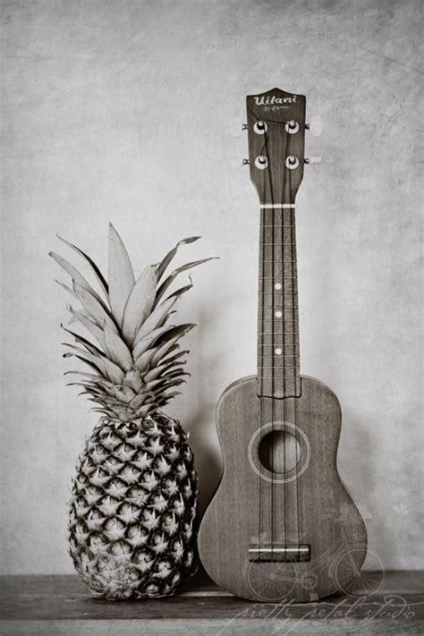 life photograph pineapple ukulele photo