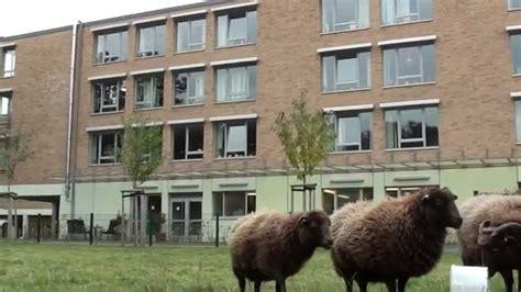 Altenheim Haus Im Park Uerdingen Evangelische Altenhilfe