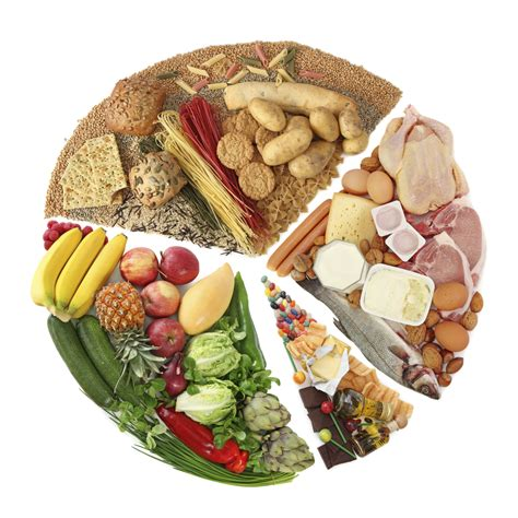 ideal cuisine 10 facts about nutrition in fact collaborative