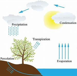 A Schematic View Of The Hydrologic Cycle  Water Cycle