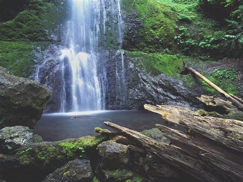 olympic national park peninsula falls washington marymere places visit things tripstodiscover spectacular