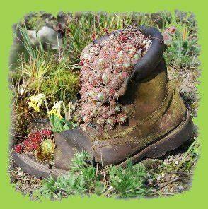 Sukkulenten Arten Bilder : mai ~ Lizthompson.info Haus und Dekorationen