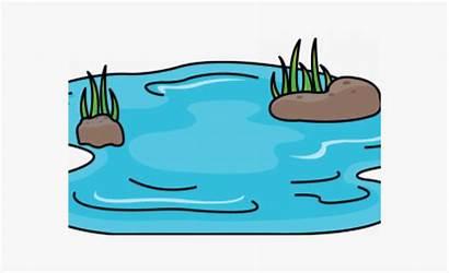 Pond Animated Cartoon Drawing Drawn Transparent Netclipart