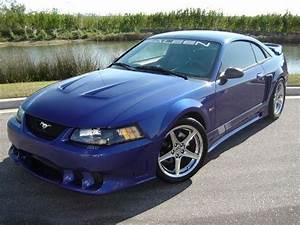 stangray04 2004 Saleen Mustang Specs, Photos, Modification Info at CarDomain