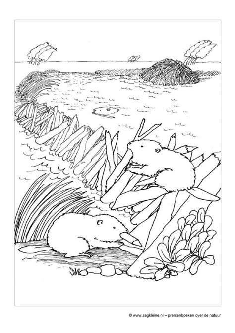 Gratis Kleurplaten Voor Peuters Dieren by Gratis Kleurplaten Dieren Voor Peuters En Kleuters
