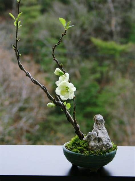 zen gardens ideas  pinterest japanese garden