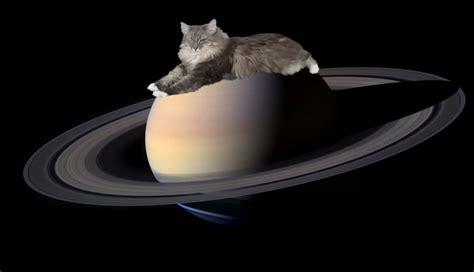 ring for 土星には猫がいる nasa研究者の粋なネーミングセンス ハザードラボ