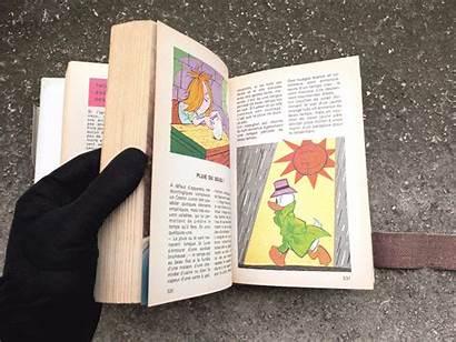 Junior Woodchucks Guidebook Wild Duck Flip Hejorama
