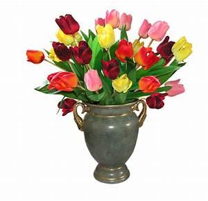 Pot De Fleur Transparent : tulips flowers free photo on pixabay ~ Teatrodelosmanantiales.com Idées de Décoration