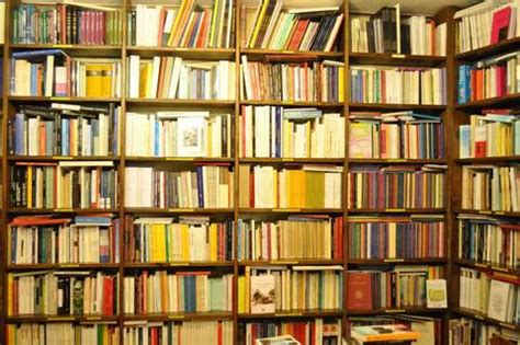 Libreria Esoterica Bologna by Libreria Esoterica Ibis Terra Nuova