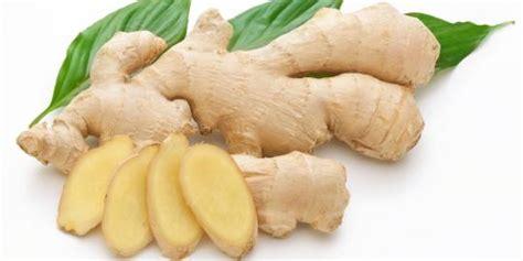 obat tradisional asam urat dan rematik cara sehat alami