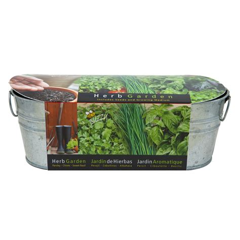 shop buzzy herb gardening kit at lowes